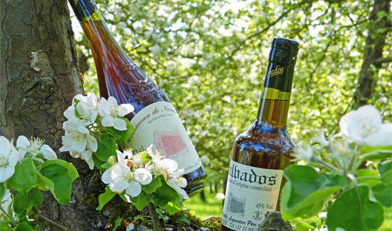 Calvados_alcool_normand_digestif_pommeau_apperitif