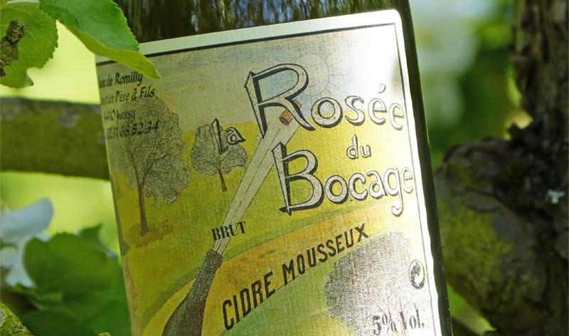 Cidre_brut_bouteille_mousseux_normandie