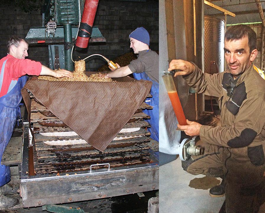 pressage_pommes_cidre_agriculteurs_gite visite cidricole_assemblage